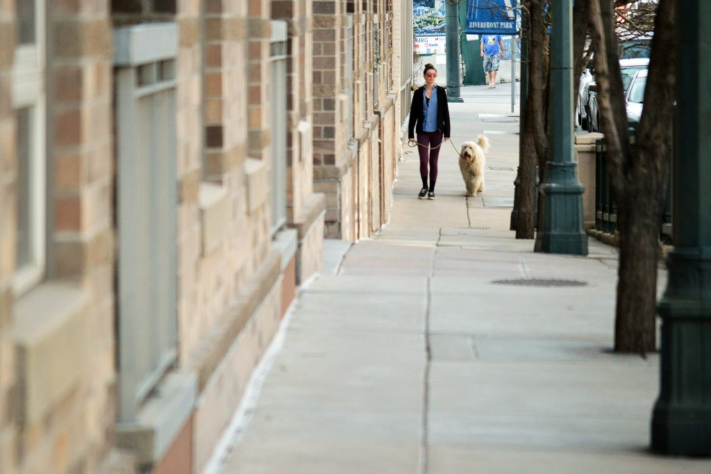 How Much Do Dog Walkers Make in New York City?